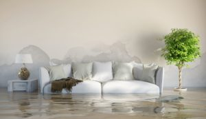 water damage restoration naperville, water damage repair naperville, water damage cleanup naperville